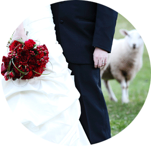 Ranch_Wedding